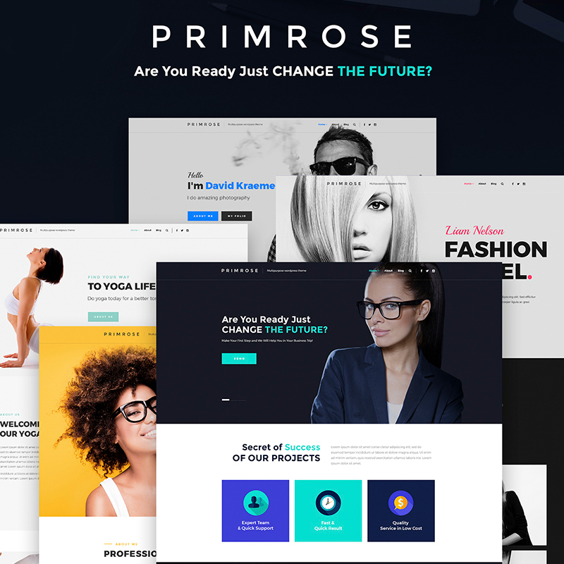 A Bundle Primrose - Multipurpose WordPress Theme