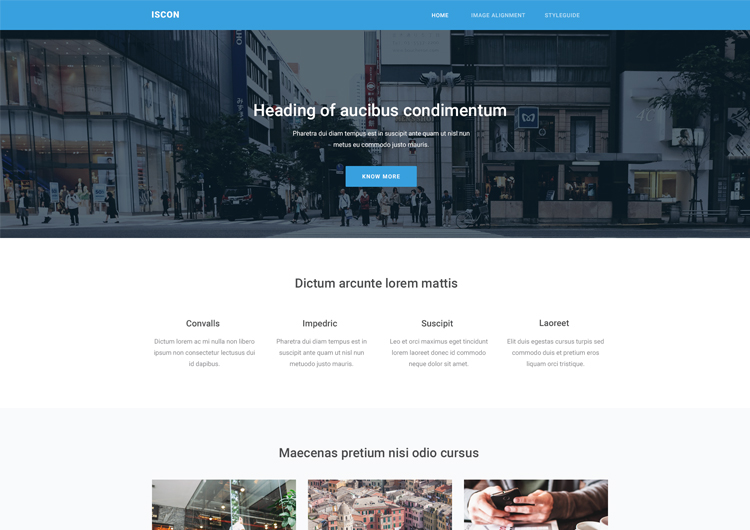 Iscon Free Start Bootstrap Website Templates - Ease Template